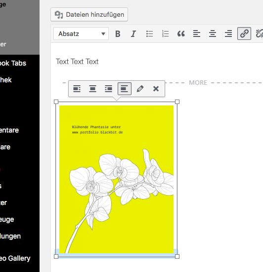 wordpress bilder ersetzen 1